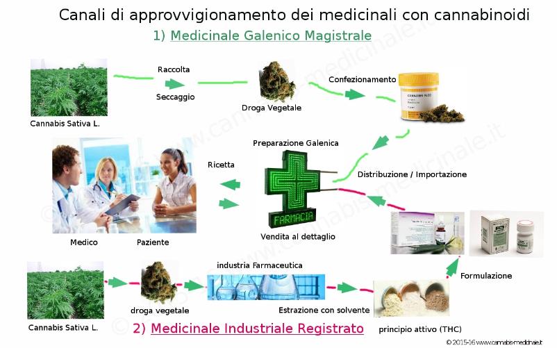 Canali di Approvvigionamento dei Medicinali con cannabinoidi in Italia